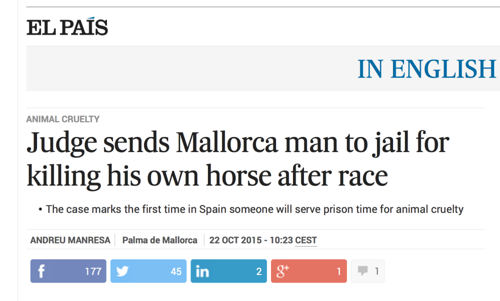 to jail for killing horse